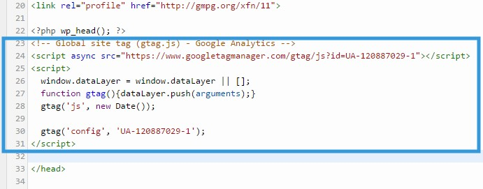 Paste the 'Global Site Tag'