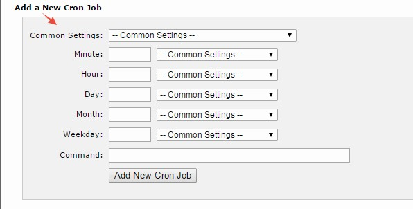'Add a New Cron Job' section