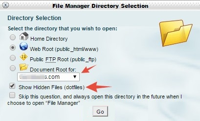 'File Manager' popup